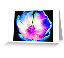 Multi-colour Pop Tulip #6 Greeting Card