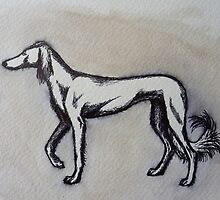 Saluki by Polecatty
