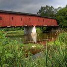 West Montrose Bridge  by GerryMac