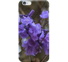 Purple Blossoms on a Tree iPhone Case/Skin