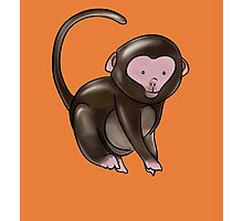 Cute Monkey Design Photographic Print