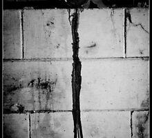 Spilled emotions by Denis Opalchenski
