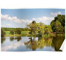Lake and trees rural landscape Poster