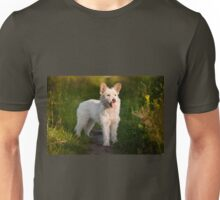 white stray dog in meadow Unisex T-Shirt