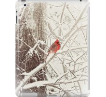 Frost Covered Cardinal One Winter Morning iPad Case/Skin