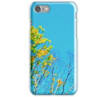 Fading Leaves iPhone Case/Skin