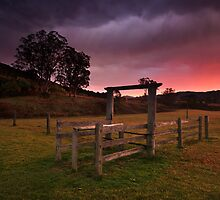 Sunrise at the Corral by Andrew Murrell