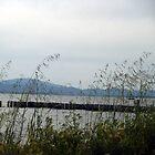 Windy Lake by SecondNature