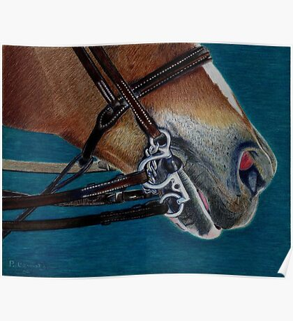 A Bit of Control - Study of the English Horse Bridle Poster