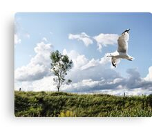 Determined Canvas Print