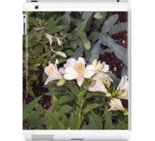 Longwood Gardens - Spring Series 2 iPad Case/Skin