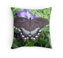 Dark, Handsome Swallowtail ... Throw Pillow