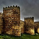 Town Walls - Avila by Juergen Weiss