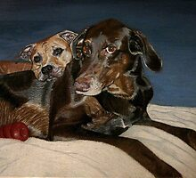 Brotherly Love - Two dogs cuddling up together by Patricia Barmatz