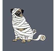 The Mummy Pug Return Photographic Print