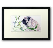 Pug & Nature - Colored Pencil Framed Print