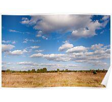 Rural landscape in Poland Poster