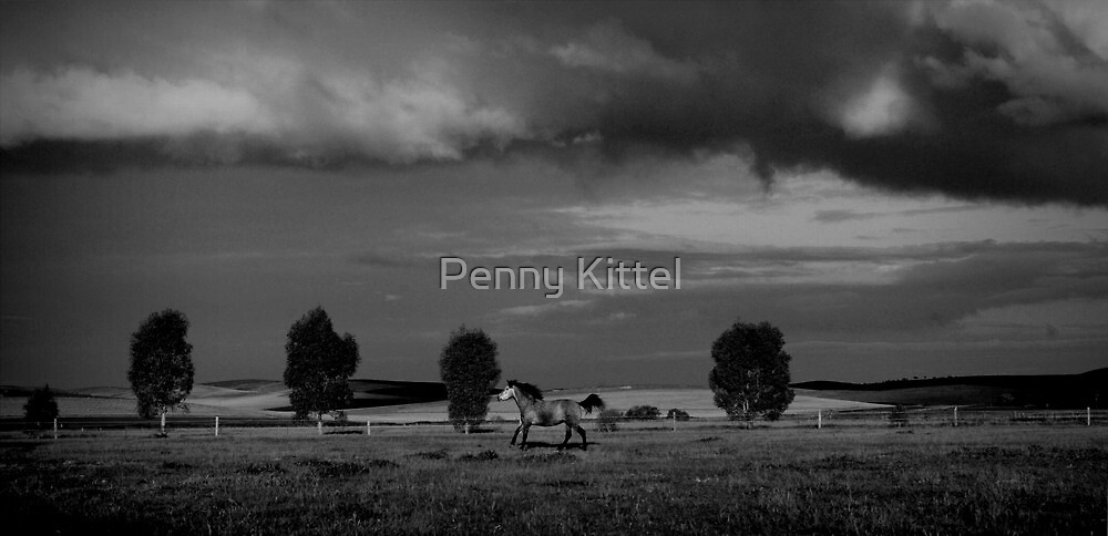 Restless by Penny Kittel