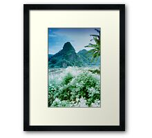 Nam Sim Mountains Framed Print