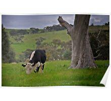 Rural South Australia. Poster