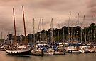 Shotely Marina by Darren Burroughs