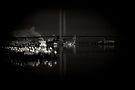 Bolte Bridge by Andrew Wilson