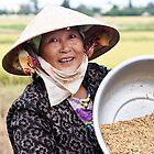 Harvesting the rice crop, Hoi An by Fran53
