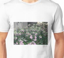 Longwood Gardens - Spring Series 10 Unisex T-Shirt