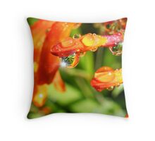 SUNNY MORNINGS. Throw Pillow