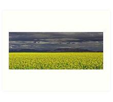 Stirling Ranges - Western Australia Art Print