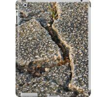 road earthquake iPad Case/Skin