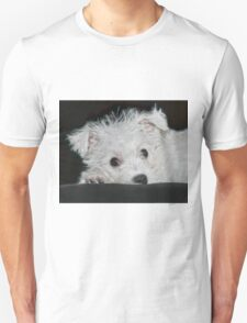 Resting Puppy T-Shirt