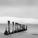 the old jetty by Suellen Cook