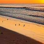 SUNRISE - OCEAN CITY, NEW JERSEY by RGHunt