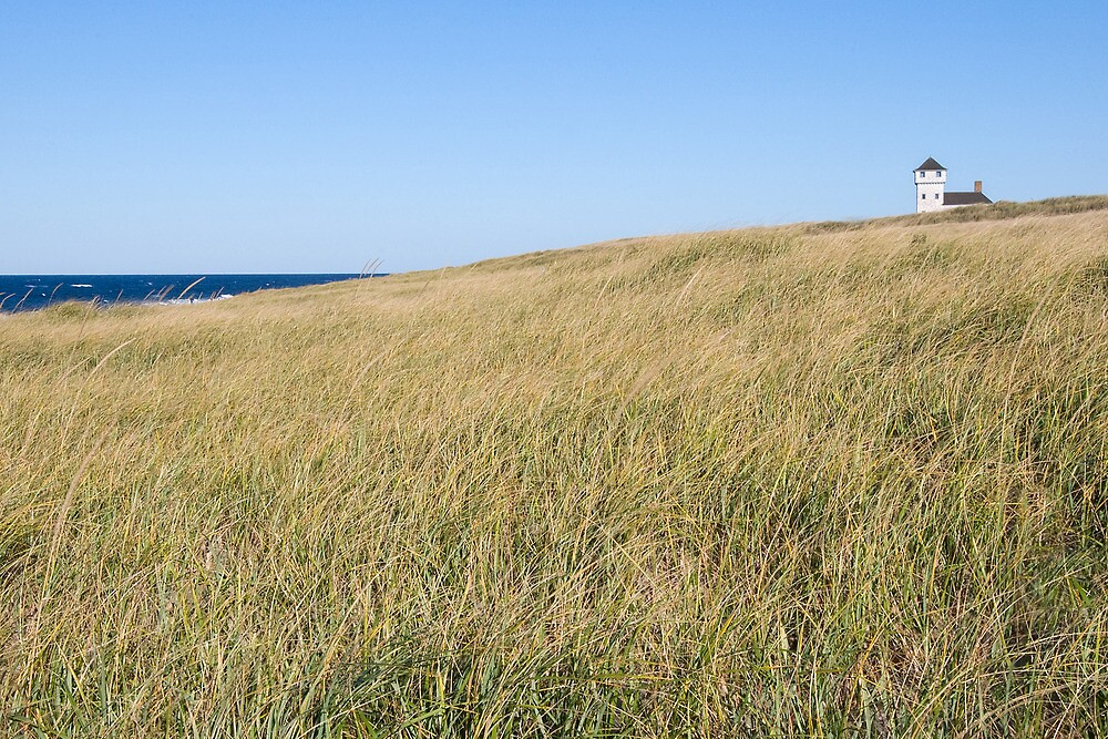 rock point, cape cod by mortonboy