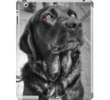 Some Angels Have Fur iPad Case/Skin