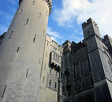 Arundel Castle by Victoria Ellis