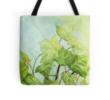 Ivy leaves on the vine Tote Bag