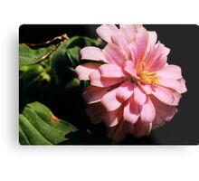 Ribbon Flower Metal Print