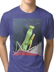 Praying Mantis Macro Photo Tri-blend T-Shirt
