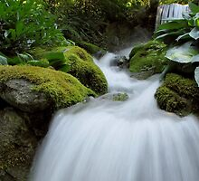 Small waterfall by Tracy Friesen