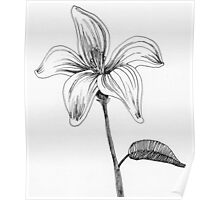 ink flower drawing Poster
