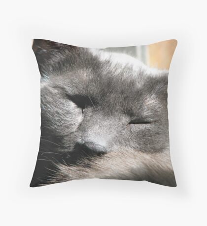 Repose Throw Pillow