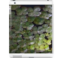 Longwood Gardens - Spring Series 24 iPad Case/Skin
