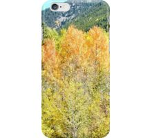 Colorado Fall Colors in the Aspen Trees iPhone Case/Skin