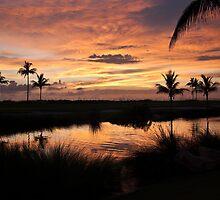 Sunset Silhouette by Sally Kady
