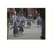 Penguin Parade Art Print