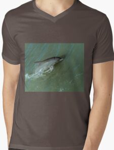 Bottlenose Dolphine Mens V-Neck T-Shirt