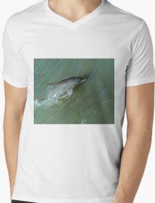 Bottlenose Dolphine Mens V-Neck T-Shirt