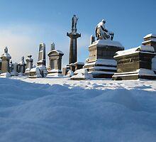 Winter Sleep by RSMphotography